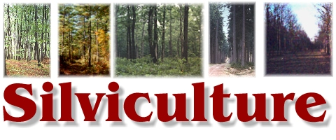 MASTER OF APPLIED SCIENCE IN SILVICULTURE CURRICULUM